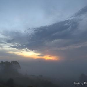 11日ぶりの朝陽