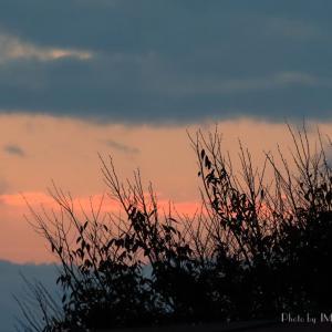 雲が多いけど...朝陽