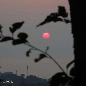 今朝も...紅い朝陽