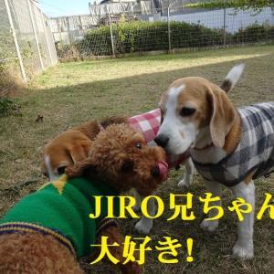 1歳のラン友とランで大いに楽しんだTARO&JIRO!