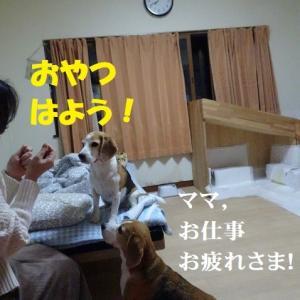 ママを寝ずに待ってたTARO&JIRO…