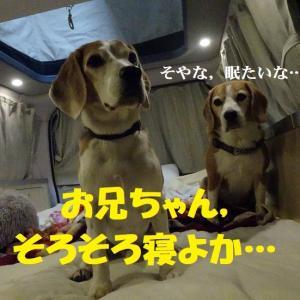 TAROJIRO一家,お友達宅への小旅行!(前編)