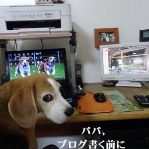 パパ,お布団敷いて!(BY TAROJIRO)