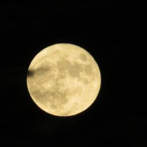 中秋の名月と…(人''▽`)ありがとう☆