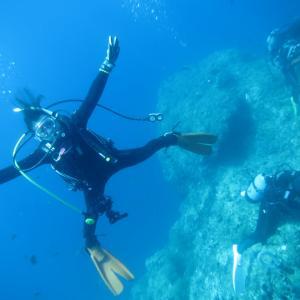 冠島ダイビングレポート