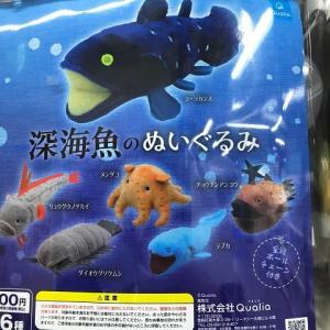 ガチャ:深海魚のぬいぐるみ