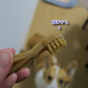 食べる歯ブラシ