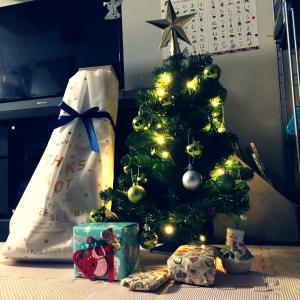 クリスマス2018♪サンタさんがやってきた!