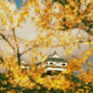 松山城 二之丸史跡庭園の紅葉 昨年11月17日撮影  その3