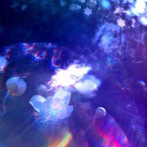 10月11日撮影 東温市実家の庭