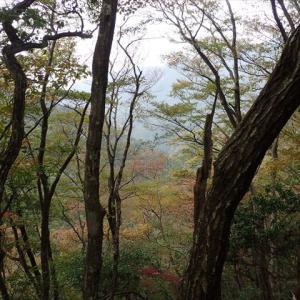黒尾山から銚子ヶ口へのプチ縦走 2 丸山~黒尾山編