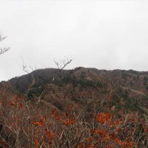 釈迦岳 岩が峰から三池岳周遊 甘からず! 2