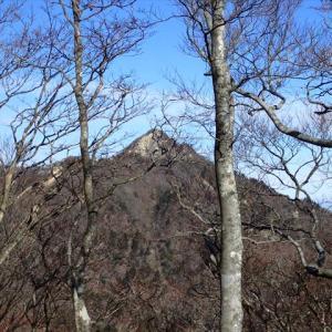 妻峡から 入道ヶ岳~鎌ヶ岳 4 県界稜線編