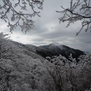 霧氷を求めて薊岳3 明神平編 下山は明神谷コースで♪