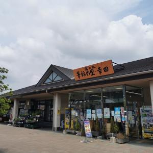 「桃の季節になりました。in 道の駅 筆柿の里・幸田」リーヌヽ(^o^)丿