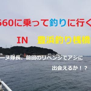 【アジが】リーヌ隊長、釣りに行く!in豊浜釣り桟橋【釣りたい】リーヌ(≧▽≦)