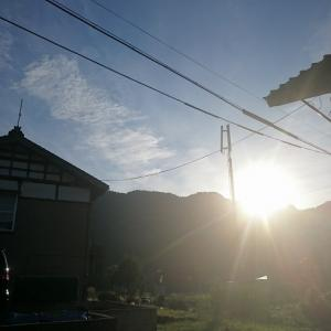 「リーヌ隊長の夏休み2019 in新潟県葎谷」リーヌ(≧▽≦)
