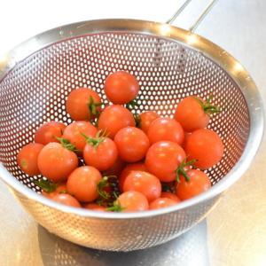 夏野菜 一時間で簡単保存食作り