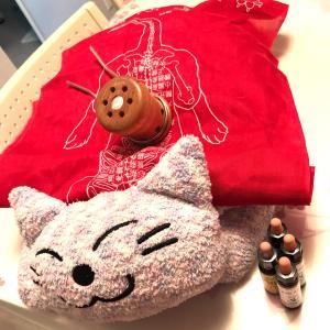 犬猫と温活♥幸せマッサージ&温灸講座のご参加ありがとうございました!