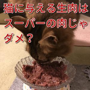 Q&A犬猫の手作りごはんの食材は主にどんなものを使いますか?