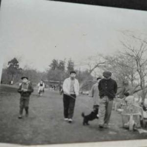 60年前の写真