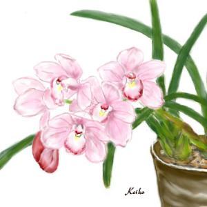 植物から元気のエール