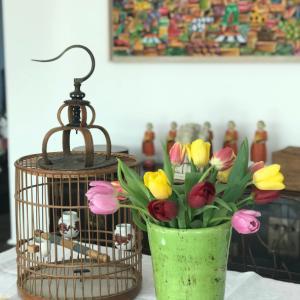 心は不安なままだけれど、花が買えたのは小さな幸せ♡