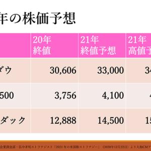 大和証券シュナイダー恵子のセミナー S&P500は年末4,100に