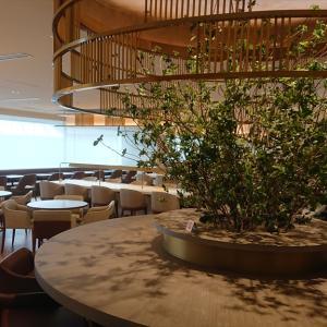 成田国際空港 JALファーストクラスラウンジ JAL's Table 食事編 20年3月