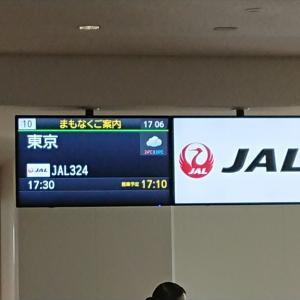 ボーイング787-800型機 JL324 福岡~羽田 ファーストクラス 搭乗記 21JUN20
