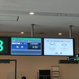 ボーイングB787-800型機 JL311 羽田 ~福岡 ファーストクラス 搭乗記 20JUL20