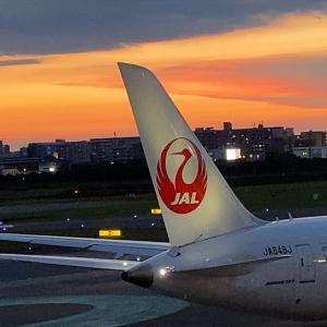 福岡空港さんぽ 20年08月