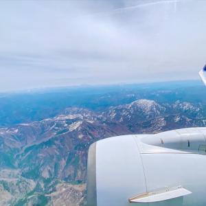 ボーイングB737-700型機 NH719 羽田~大館能代 普通席 搭乗記 24APR21
