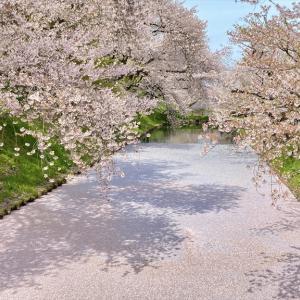 弘前さくらまつりへ行ってみた。 2021年4月