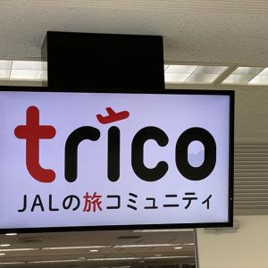 JALファンサイトtricoの「特別チャーターフライト」に参加!フライト編1