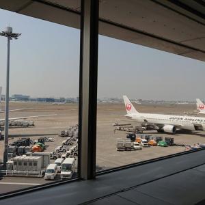 2020 羽田国際線増便枠数が正式決定!JALはどの路線?