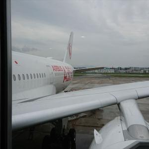 JL317 羽田 – 福岡 01SEP19 エアバス AIRBUS A350-900型機 初就航便 普通席 搭乗記