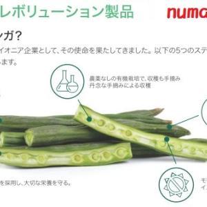 【Moringaモリンガライフ】お母さんや栄養の専門家に選ばれるZIJAジージャのモリンガ?