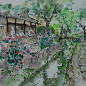 京都・哲学の道より
