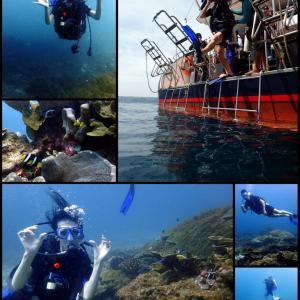 潜在能力からすでに高過ぎ!?@ラチャノイ島ダイビング。