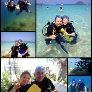 今日も北の大地からこんにちは!@コーラル島体験ダイビング!