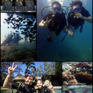 続・北の大地からこんにちは!@コーラル島体験ダイビング!