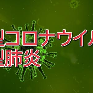 【スピ解説】新型コロナウイルス・緊急事態宣言は統合のきっかけ