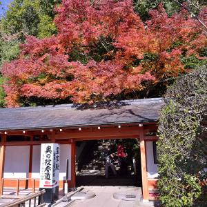 京都鞍馬、その3 奥の院 魔王殿