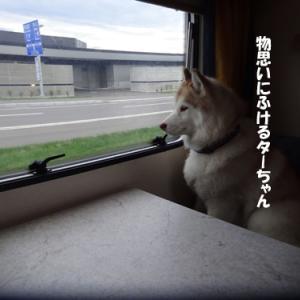 最終日は日本海側へ!