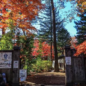 盛岡市保護庭園『一ノ倉邸』の紅葉 その1
