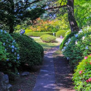2年ぶりに散策...南部氏庭園春の開園