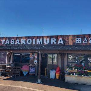 産地直売所『田さ恋むら』でフルーツサンドとトマトソフトクリーム