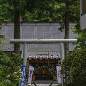 夏越の祓いのお詣りに三戸大神宮へ...♪
