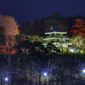 下界から見上げる三戸城のライトアップ!